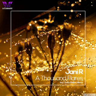 http://silk-music.com/artwork/silksf088/[silksf088]-cover(320).png